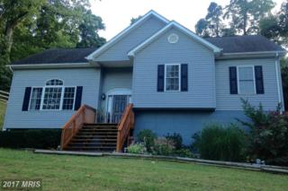 619 Mountain Heights Road, Front Royal, VA 22630 (#WR9886528) :: LoCoMusings