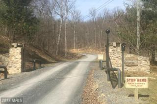 LOT 2,5,6, 7,8A,9A,11 SPRINGWATER S/D, Linden, VA 22642 (#WR9888720) :: Pearson Smith Realty