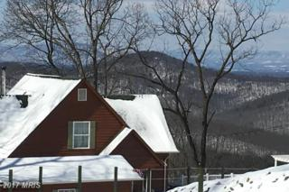 Lot 30 Broadway Court, Linden, VA 22642 (#WR9889304) :: Pearson Smith Realty