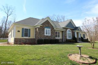 231 Reliance Woods Drive, Middletown, VA 22645 (#WR9890853) :: LoCoMusings