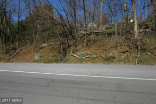 Luray Avenue, Front Royal, VA 22630 (#WR9893479) :: Pearson Smith Realty