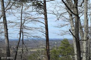 Lower View Road, Strasburg, VA 22657 (#WR9895610) :: LoCoMusings
