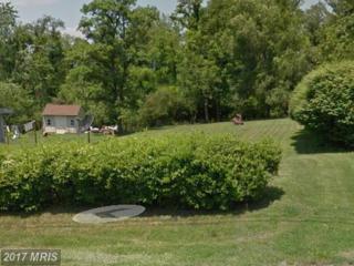 0 BRAXTON Road, Front Royal, VA 22630 (#WR9900096) :: Pearson Smith Realty