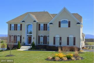 208 Jackson Place, Middletown, VA 22645 (#WR9901966) :: Pearson Smith Realty