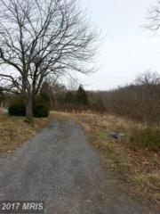 906 Strasburg Road, Front Royal, VA 22630 (#WR9905089) :: Pearson Smith Realty