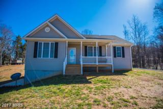 47 Luchase Road, Linden, VA 22642 (#WR9907523) :: Pearson Smith Realty