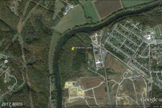100 Kendrick Lane, Front Royal, VA 22630 (#WR9910073) :: Pearson Smith Realty