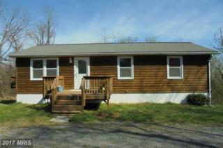 337 Granny Smith Road, Linden, VA 22642 (#WR9912388) :: Pearson Smith Realty