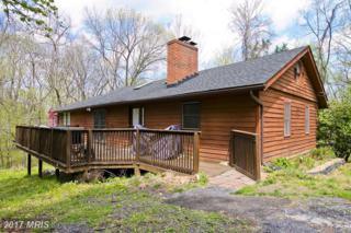 335 Pine Shores Drive, Front Royal, VA 22630 (#WR9912523) :: Pearson Smith Realty