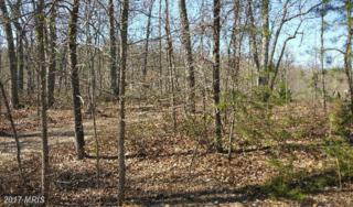 587 Old Oregon Road, Front Royal, VA 22630 (#WR9915615) :: Pearson Smith Realty