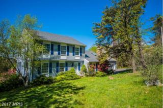 99 Wealthy Road, Linden, VA 22642 (#WR9919655) :: Pearson Smith Realty