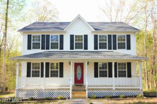1509 Blue Mountain Drive, Front Royal, VA 22630 (#WR9920752) :: Pearson Smith Realty