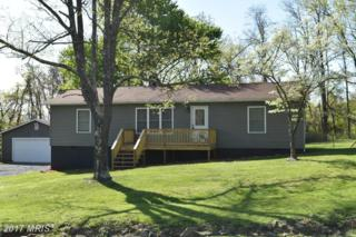 86 Cider Court, Linden, VA 22642 (#WR9922947) :: Pearson Smith Realty