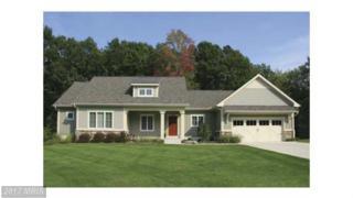 Comforter Lane, Middletown, VA 22645 (#WR9926315) :: Pearson Smith Realty