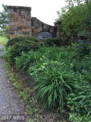 Hidden View Lane, Middletown, VA 22645 (#WR9931257) :: Pearson Smith Realty