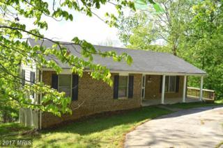 193 Lucke Way, Linden, VA 22642 (#WR9934912) :: Pearson Smith Realty