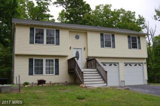 429 Black Twig Road, Linden, VA 22642 (#WR9937095) :: Pearson Smith Realty