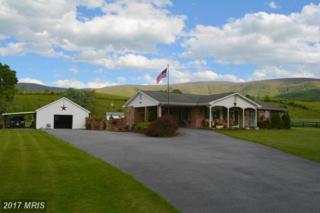 5898 Gooney Manor Loop, Bentonville, VA 22610 (#WR9937542) :: Pearson Smith Realty