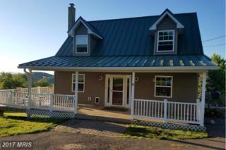 689 Granny Smith Road, Linden, VA 22642 (#WR9937945) :: Pearson Smith Realty