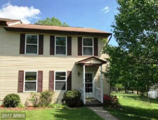 370 Duck Street, Front Royal, VA 22630 (#WR9939235) :: Pearson Smith Realty