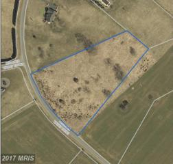 Milldale Valley Drive, Front Royal, VA 22630 (#WR9947880) :: Pearson Smith Realty