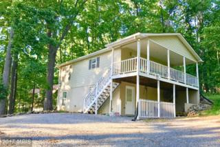 63 Cashmere Court, Linden, VA 22642 (#WR9954019) :: Pearson Smith Realty