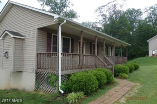 40 Lookout Point Way, Linden, VA 22642 (#WR9954740) :: Pearson Smith Realty