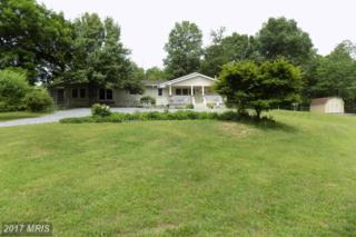 5362 Panhandle Road, Front Royal, VA 22630 (#WR9956747) :: Pearson Smith Realty