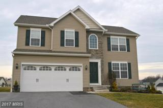 381 Sunset Drive, Hanover, PA 17331 (#YK9840646) :: Pearson Smith Realty