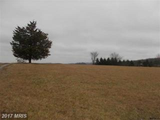 Skyview Drive, Glenville, PA 17329 (#YK9842101) :: Pearson Smith Realty