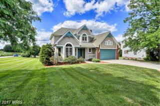 100 Arwco Drive, Hanover, PA 17331 (#YK9856433) :: Pearson Smith Realty