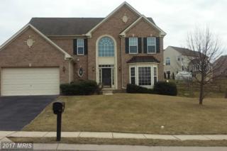6417 Lauren Lane, Spring Grove, PA 17362 (#YK9860791) :: Pearson Smith Realty