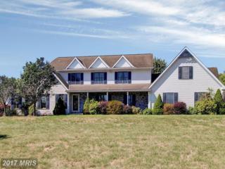 6255 Salem Run Road, Dover, PA 17315 (#YK9874187) :: Pearson Smith Realty