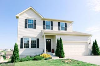 71 Flanders Court, Hanover, PA 17331 (#YK9951558) :: Pearson Smith Realty