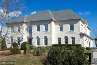 20333 Tanager Place, Leesburg, VA 20175 (#LO9748830) :: Pearson Smith Realty