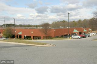 8229 Cloverleaf Drive 400,410, Millersville, MD 21108 (#AA9686806) :: Pearson Smith Realty