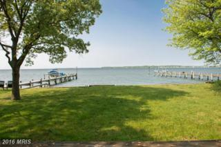 3750 Thomas Point Road, Annapolis, MD 21403 (#AA9723388) :: Pearson Smith Realty