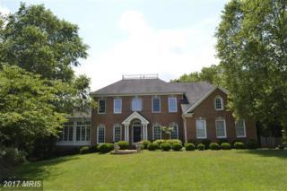 1916 Aquinas Drive, Gambrills, MD 21054 (#AA9752152) :: Pearson Smith Realty