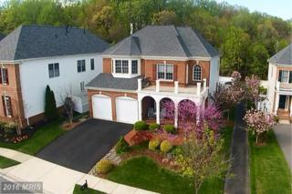 712 Brannock Terrace, Annapolis, MD 21401 (#AA9813172) :: Pearson Smith Realty