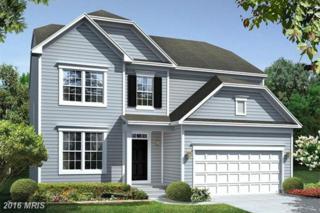 1610 Hekla Lane, Hanover, MD 21076 (#AA9814431) :: Pearson Smith Realty