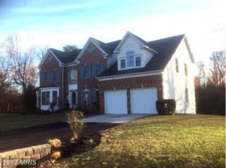 1009 Queen Annes Lace Way, Annapolis, MD 21401 (#AA9815423) :: LoCoMusings