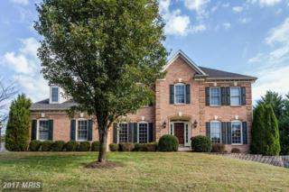 1915 Aquinas Drive, Gambrills, MD 21054 (#AA9826102) :: Pearson Smith Realty