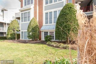2709 Summerview Way #8104, Annapolis, MD 21401 (#AA9831665) :: Pearson Smith Realty