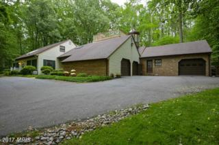 683 Discovery Court, Davidsonville, MD 21035 (#AA9851290) :: LoCoMusings
