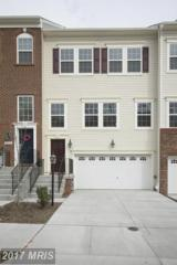 1047 Red Clover Road, Gambrills, MD 21054 (#AA9855820) :: Pearson Smith Realty