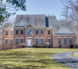 8421 Terry Lee Way, Severn, MD 21144 (#AA9886968) :: Pearson Smith Realty