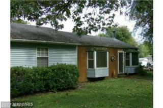 313 Holly Road, Edgewater, MD 21037 (#AA9893932) :: Pearson Smith Realty