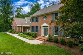 213 Mt Oak Place, Annapolis, MD 21409 (#AA9903550) :: Pearson Smith Realty