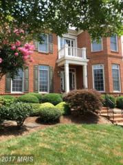 701 Hardwood Lane, Annapolis, MD 21401 (#AA9904232) :: Pearson Smith Realty