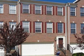 64 Two Rivers Drive, Edgewater, MD 21037 (#AA9912003) :: Pearson Smith Realty